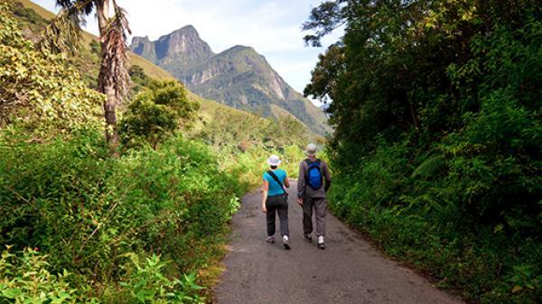 Trekking & Activity Tours